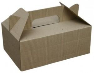 carrybox1